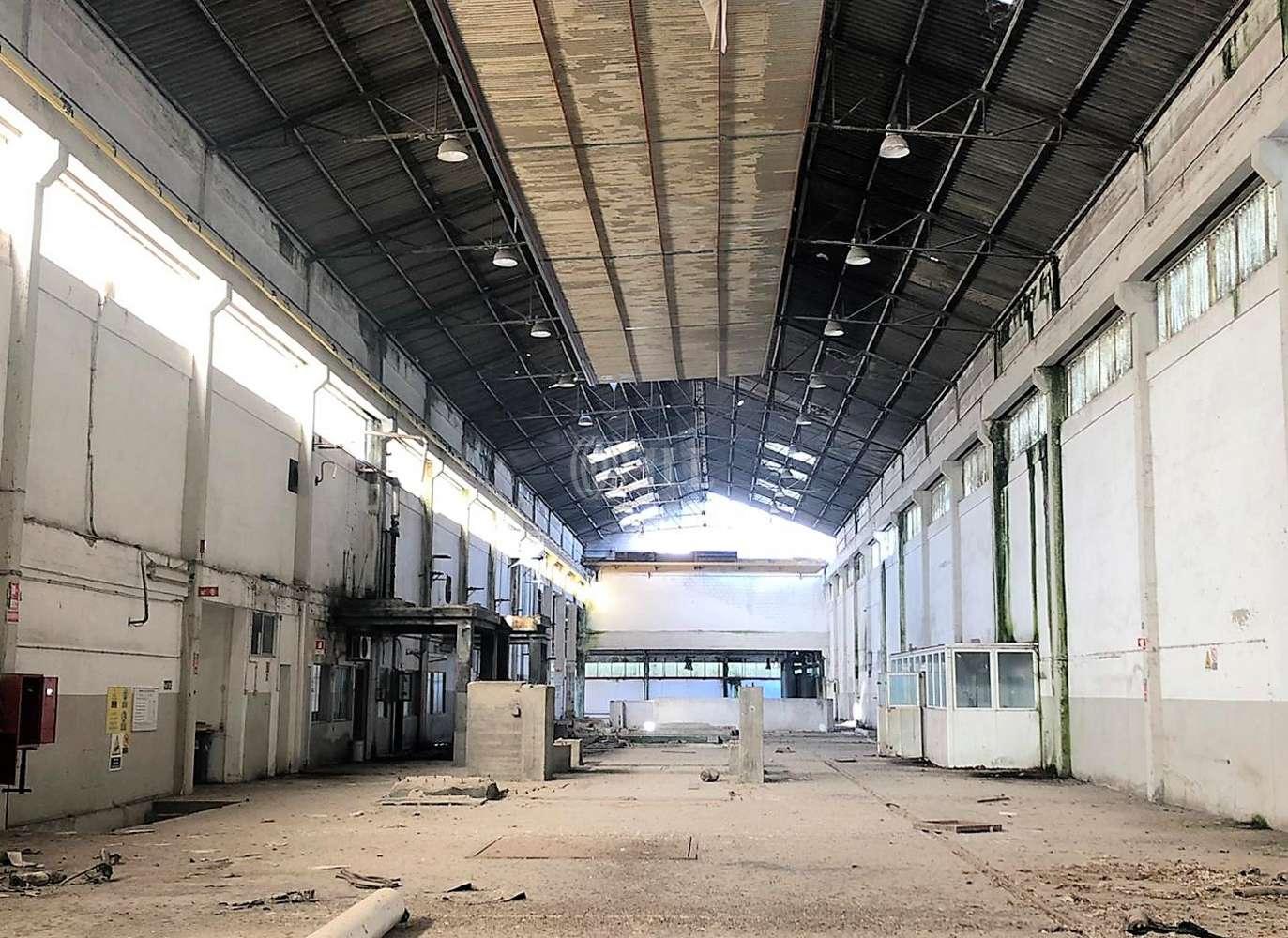 Industrial Benavente, 2130-354 - Armazém Benavente