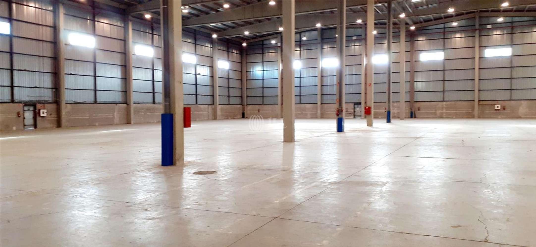 Naves industriales y logísticas Coslada, 28821 - Nave Logistica - M0396 NAVE LOGISTICA EN ALQUILER CTC COSLADA - 24239