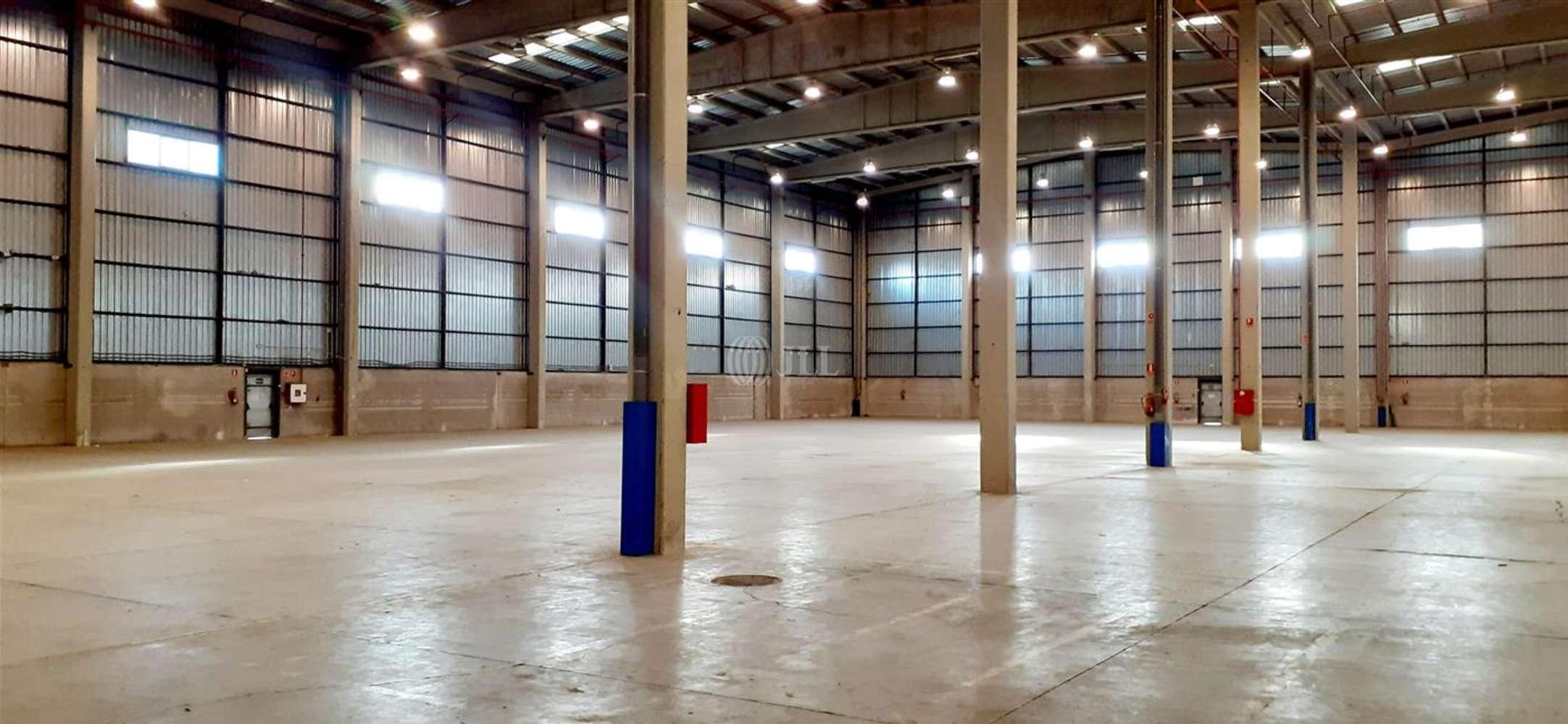 Naves industriales y logísticas Coslada, 28821 - Nave Logistica - M0396 NAVE LOGISTICA EN ALQUILER CTC COSLADA - 24240