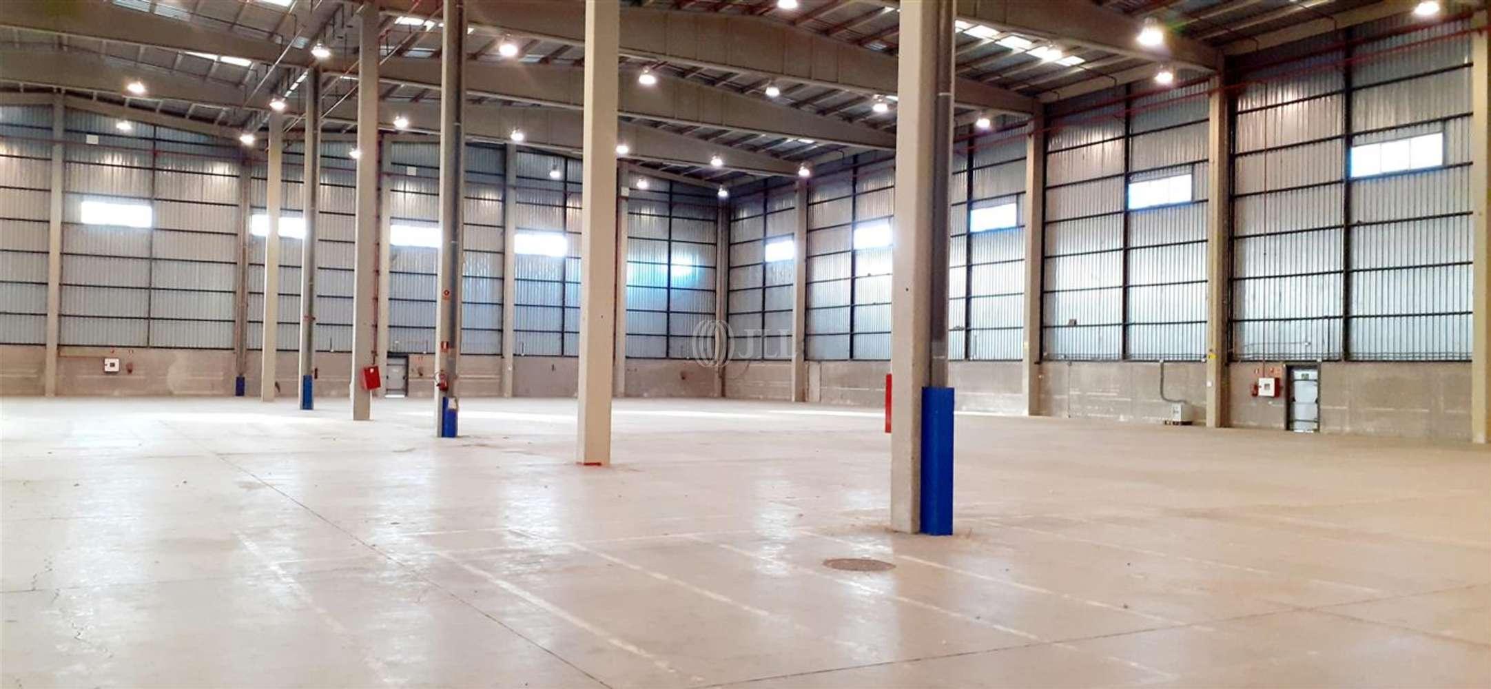 Naves industriales y logísticas Coslada, 28821 - Nave Logistica - M0396 NAVE LOGISTICA EN ALQUILER CTC COSLADA - 24242