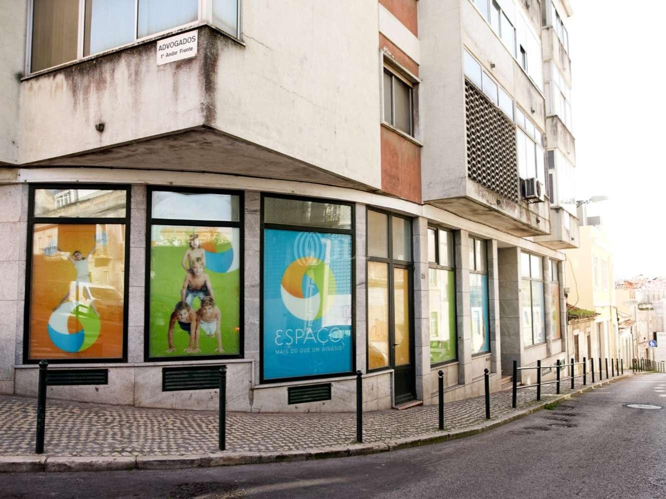 Loja Lisboa, 1350-054 - Campo de Ourique 175