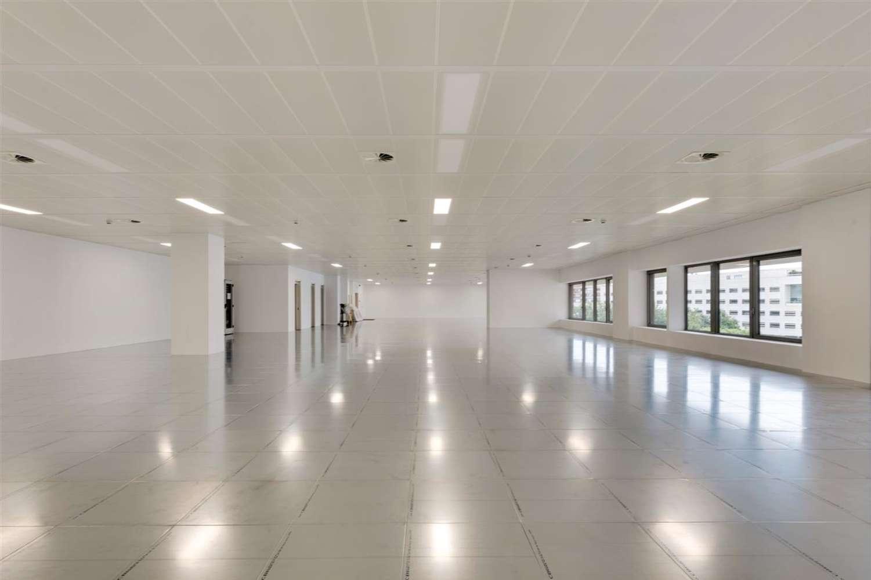 Oficina Barcelona, 08029 - L´Illa - 21176
