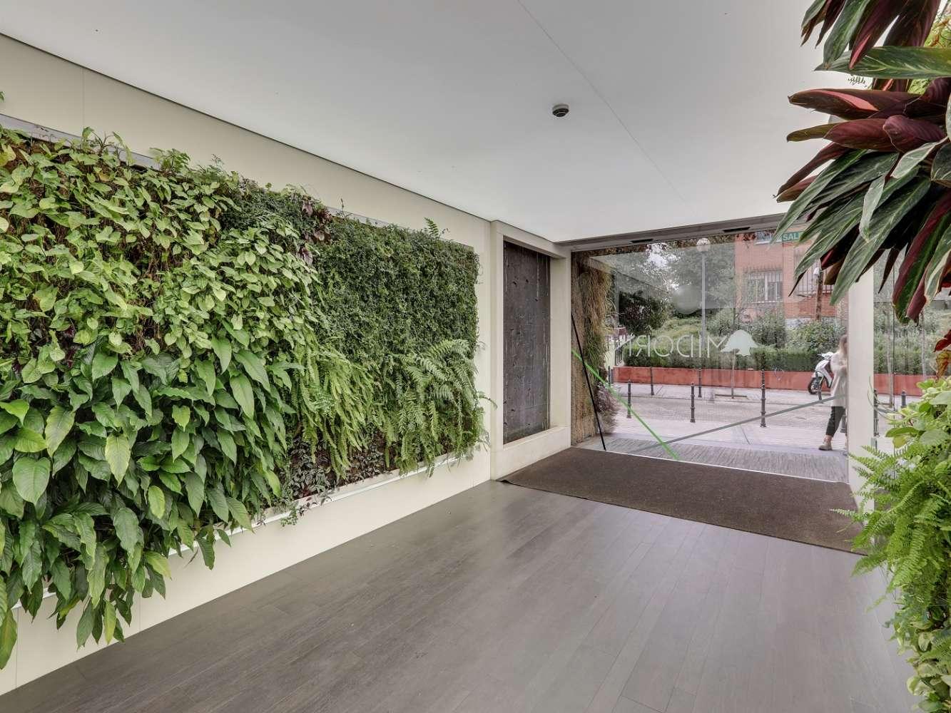Oficina Madrid, 28029 - Edificio Midori - 22341