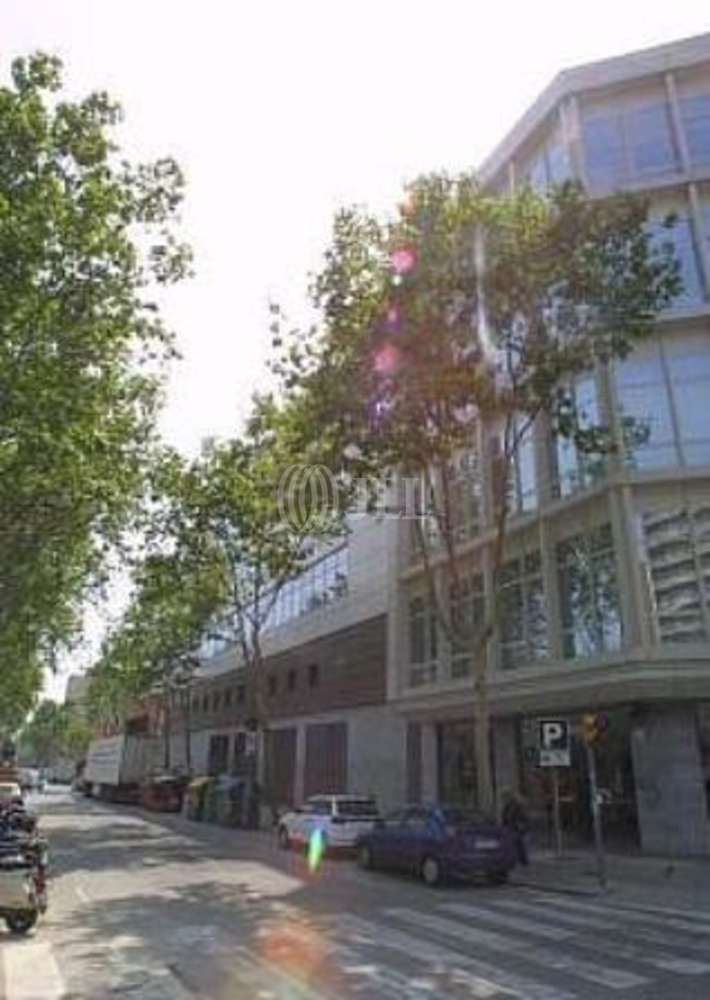 Oficina Barcelona, 08003 - LAIETANA 33 - 11536