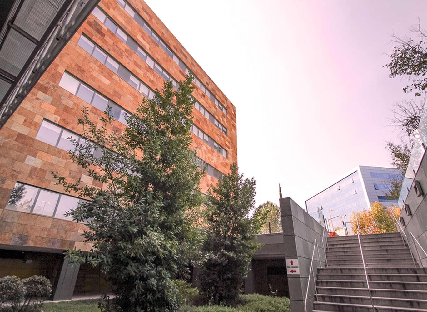 Oficina Madrid, 28050 - Edificio B - 5770
