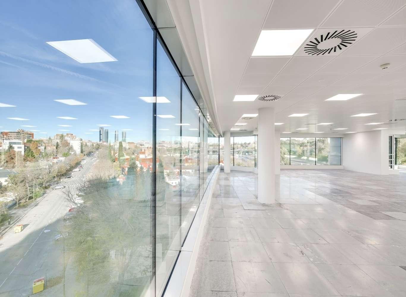 Oficina Madrid, 28016 - EUCALIPTO 33 - 13216