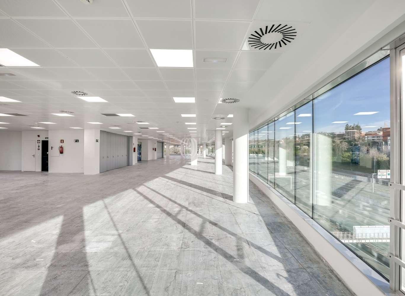 Oficina Madrid, 28016 - EUCALIPTO 33 - 13221