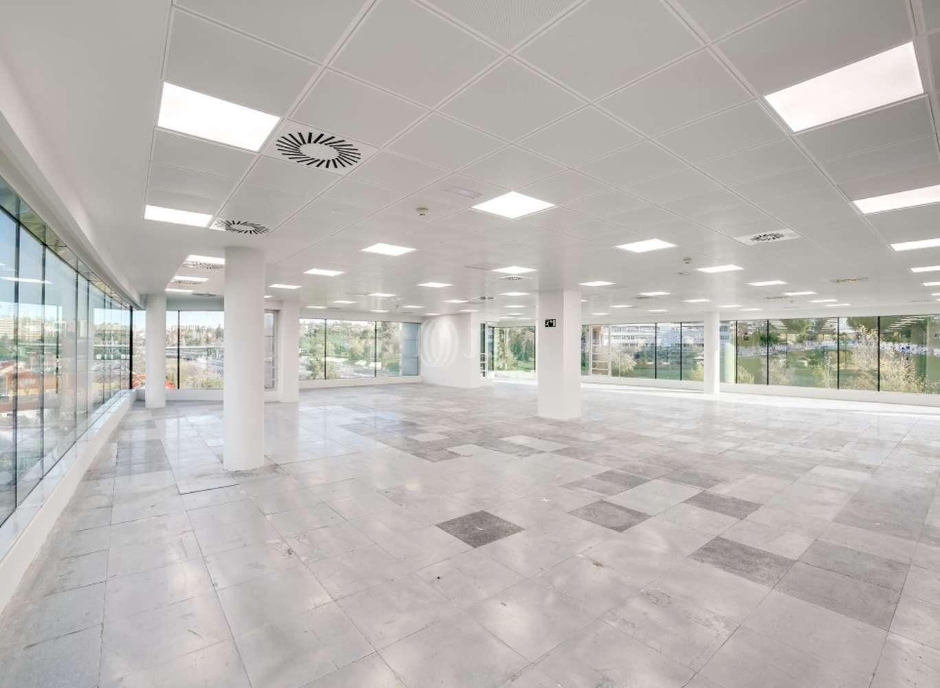 Oficina Madrid, 28016 - EUCALIPTO 33 - 13225