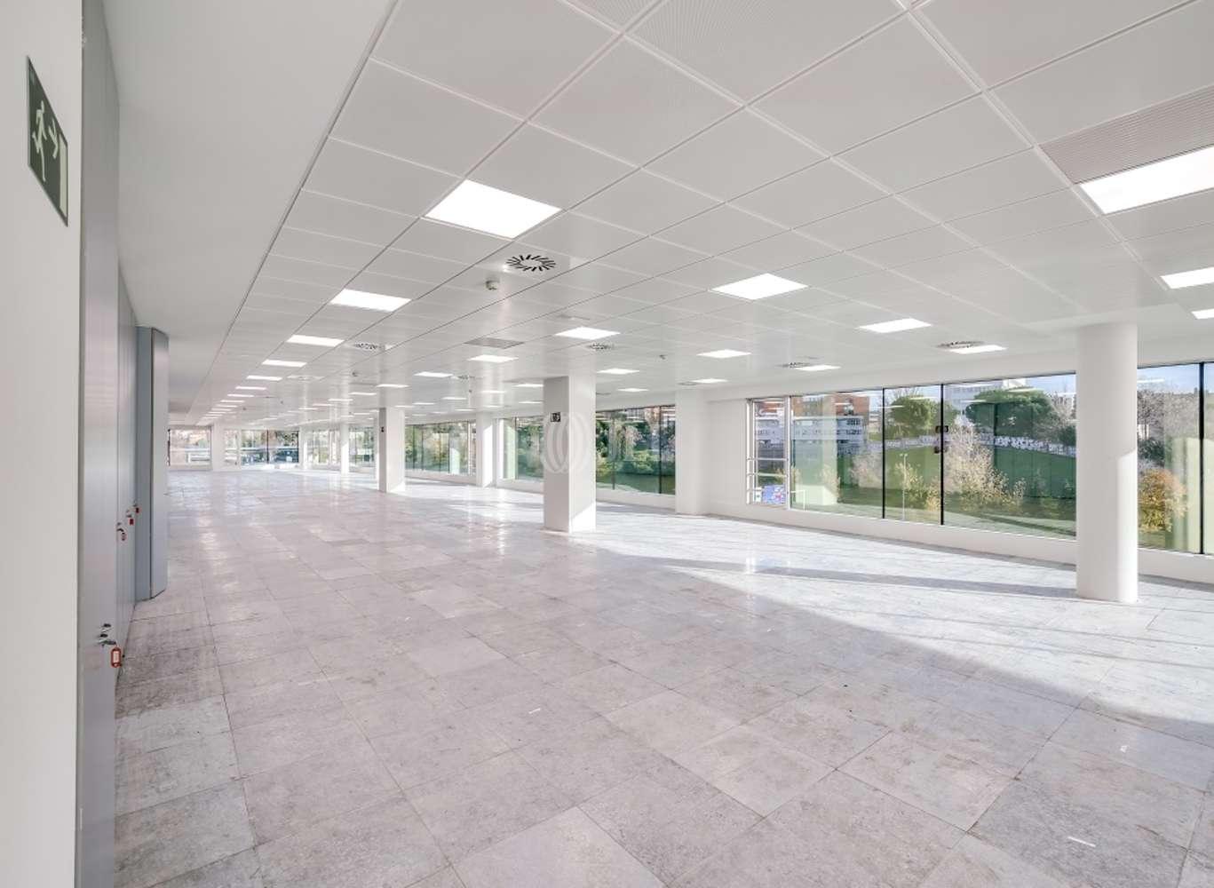 Oficina Madrid, 28016 - EUCALIPTO 33 - 13226