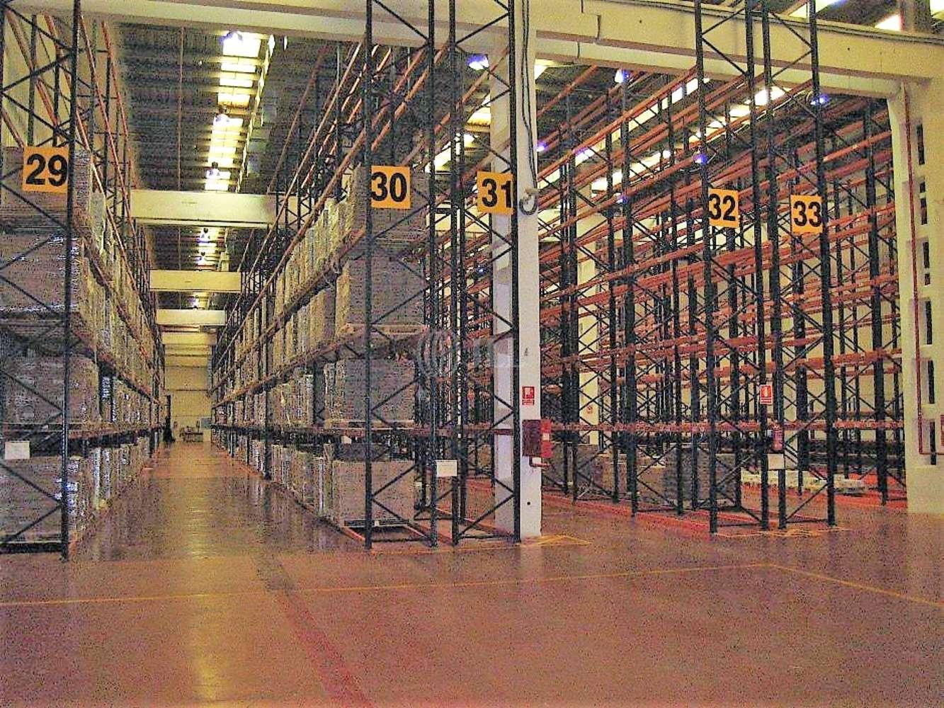 Naves industriales y logísticas Alcalá de henares, 28802 - Nave Logistica - M0219 P.I. CAMARMILLA - 13511