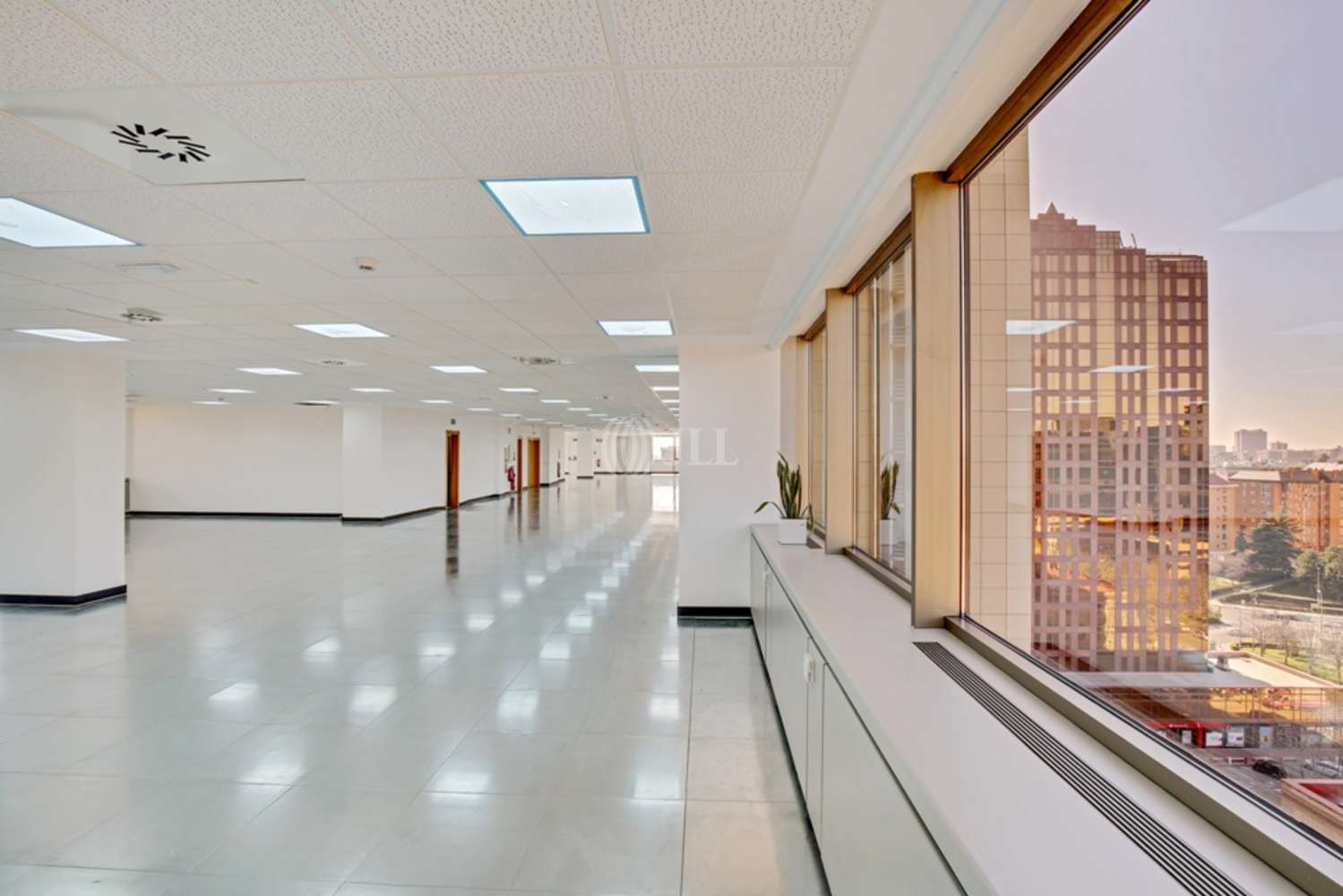 Oficina Madrid, 28036 - BURGOS 12 - 14325