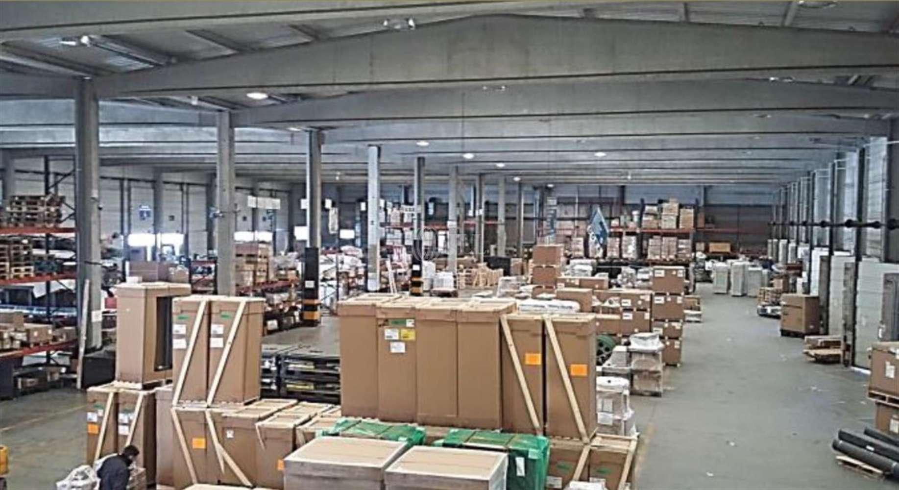 Naves industriales y logísticas Coslada, 28821 - Nave Logistica - M0389 NAVE CROSSDOCK CTC COSLADA - 15035