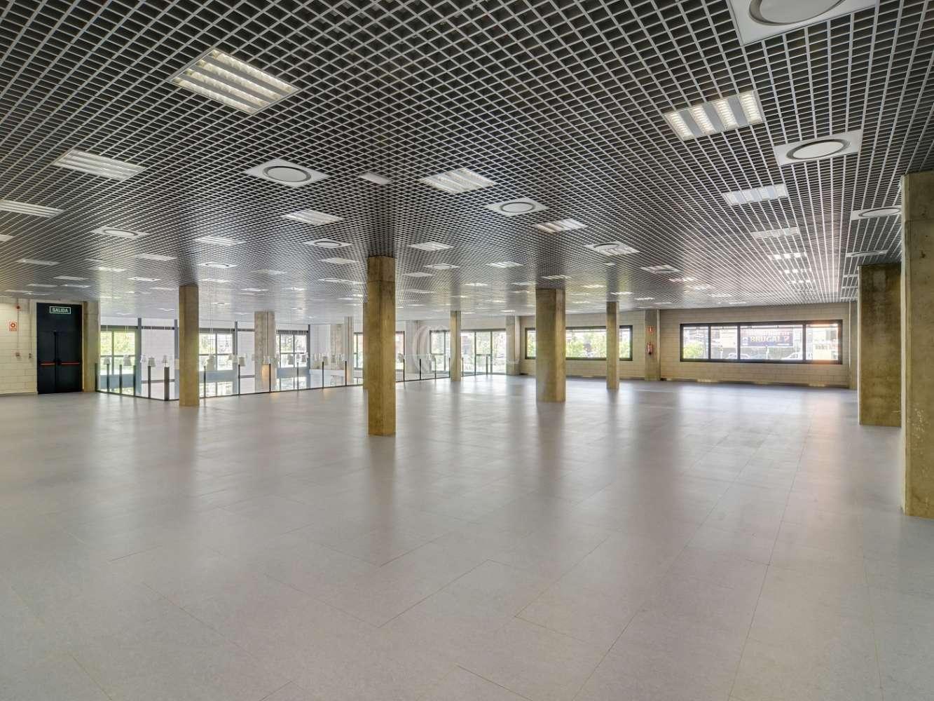 Oficina Madrid, 28031 - CABEZA MESADA 5 - 15517