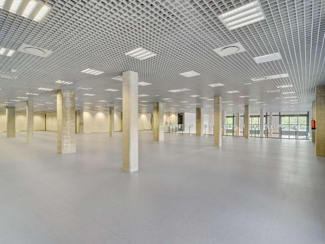 Oficina Madrid, 28031 - CABEZA MESADA 5 - 15525