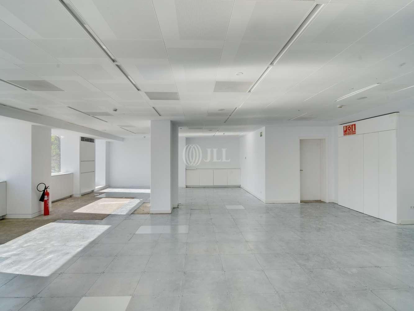 Oficina Madrid, 28046 - LA CASTELLANA 110 - 15589