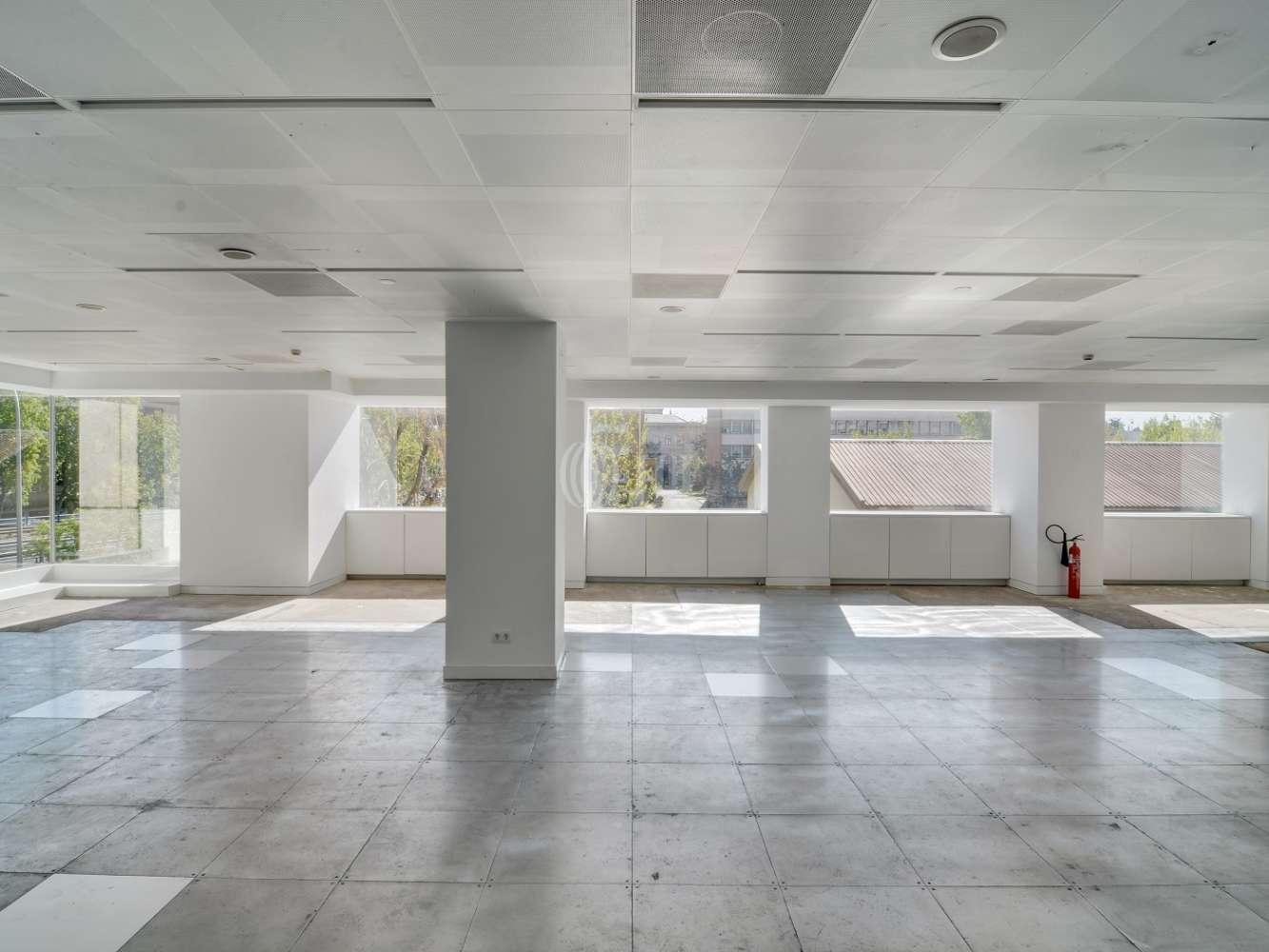 Oficina Madrid, 28046 - LA CASTELLANA 110 - 15590