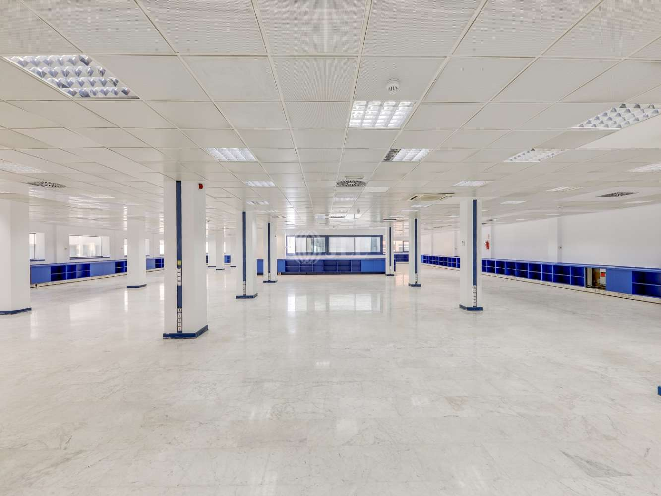 Oficina Madrid, 28016 - TORREGALINDO 1 - 17373