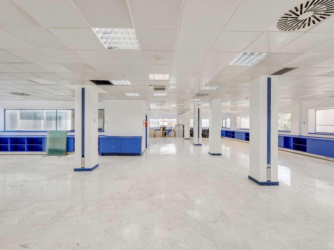 Oficina Madrid, 28016 - TORREGALINDO 1 - 17381