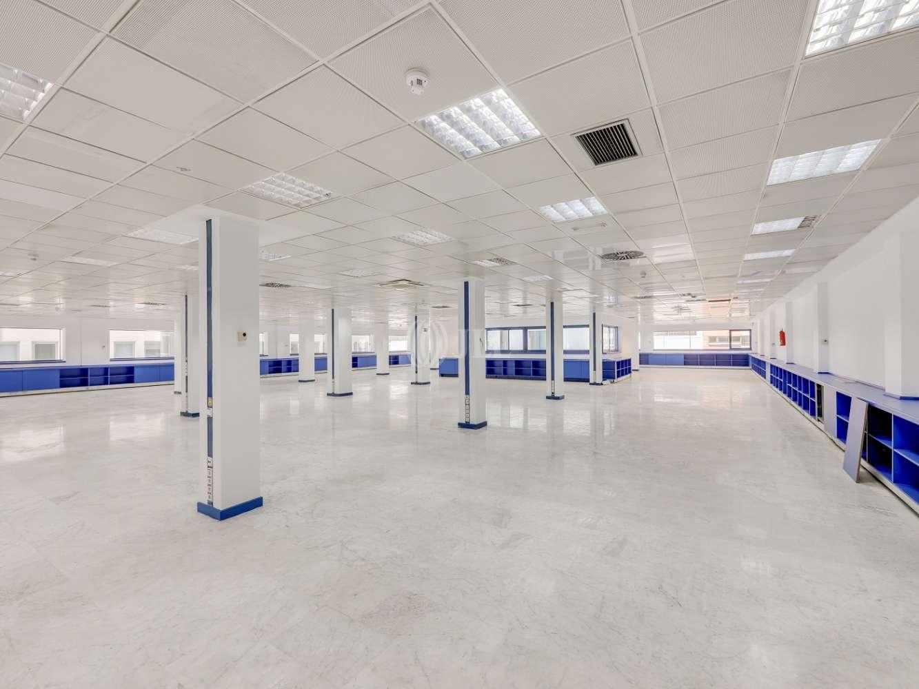 Oficina Madrid, 28016 - TORREGALINDO 1 - 17383