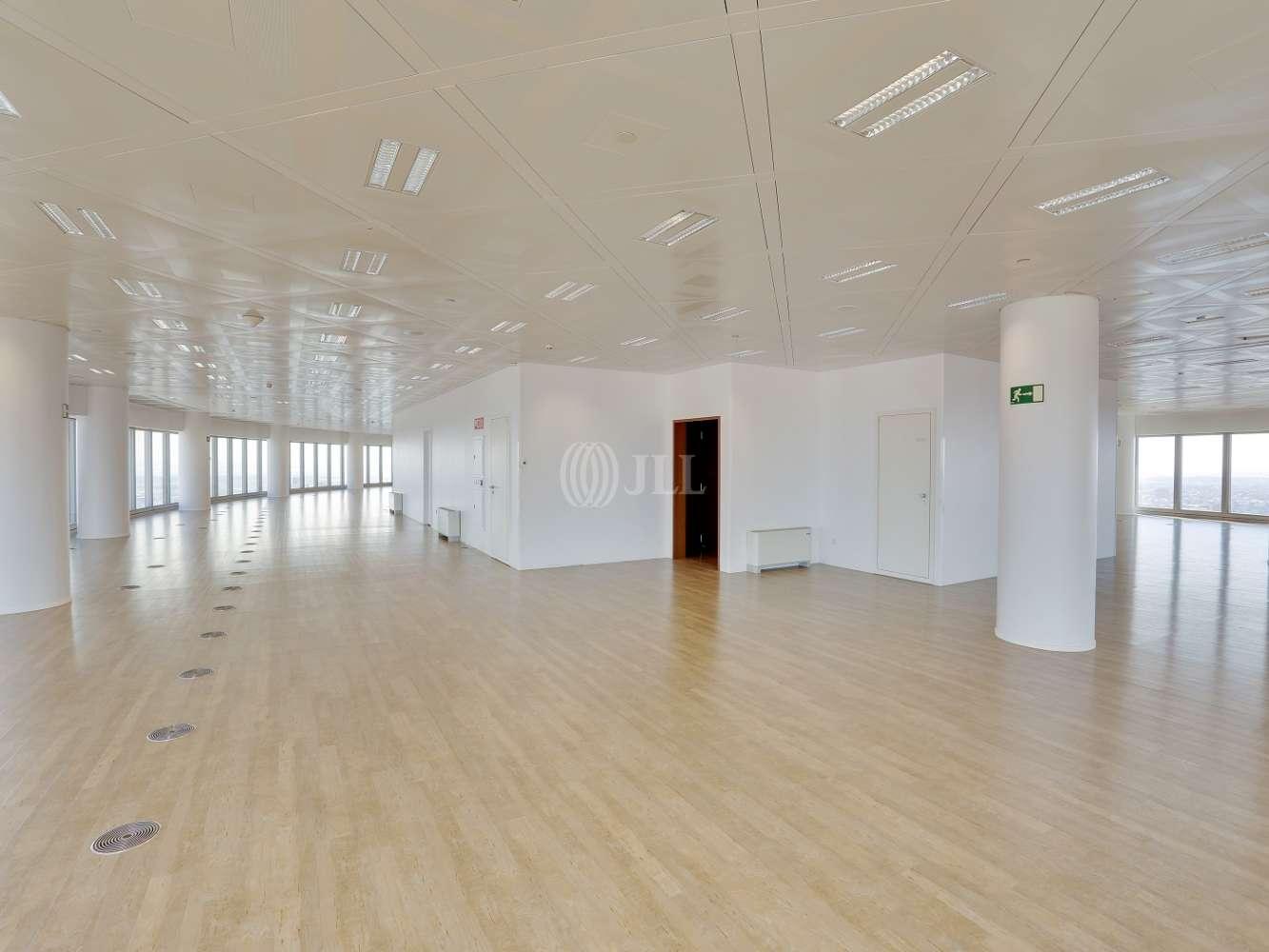 Oficina Madrid, 28046 - TORRESPACIO (D) - 17811