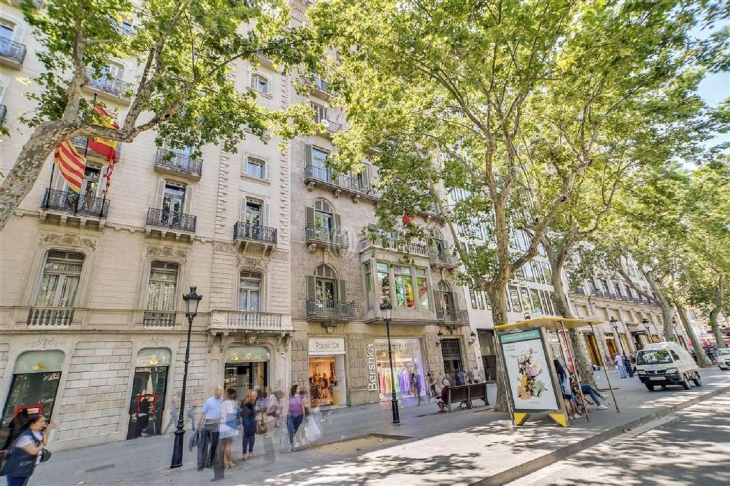 Oficina Barcelona, 08007 - GRACIA 7 - 18018