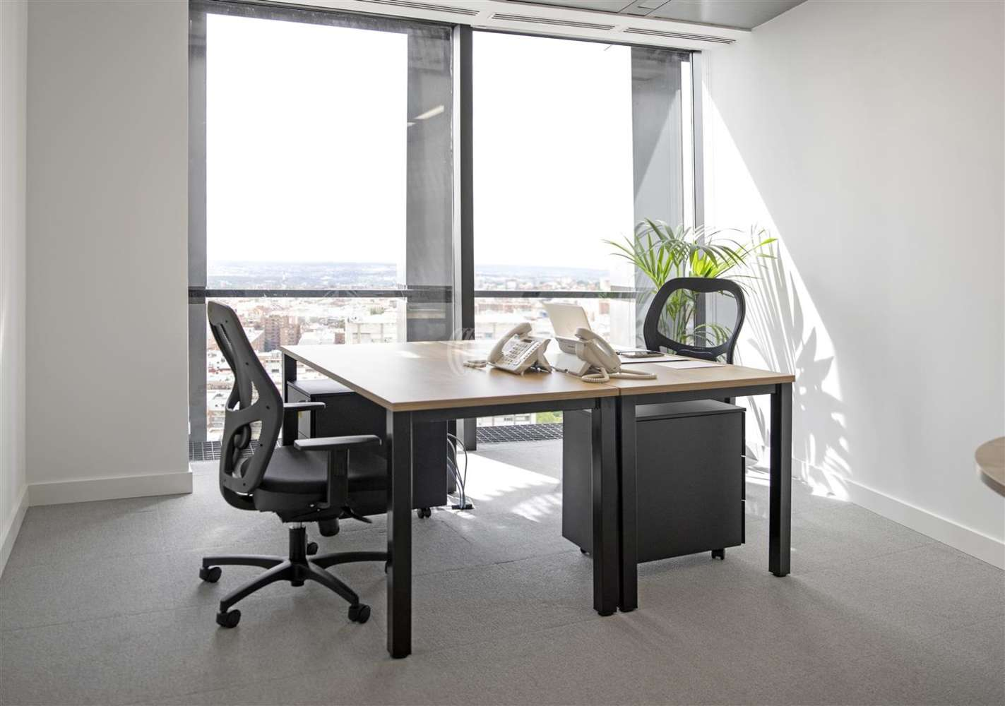 Oficina Madrid, 28046 - Coworking - Torre Europa First - 18842