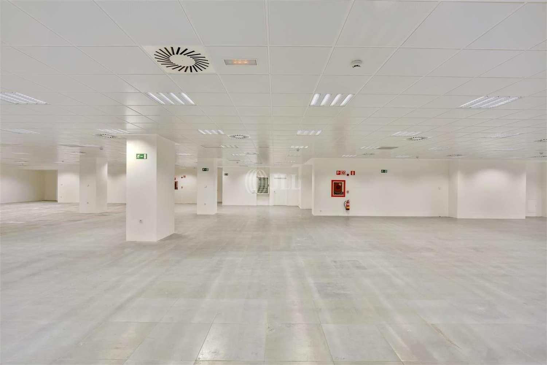 Oficina Madrid, 28046 - LA CASTELLANA 7 - 19544