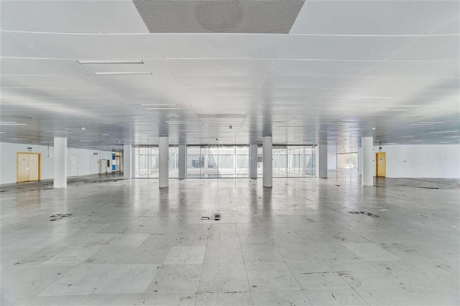 Oficina Cornellà de llobregat, 08940 - WTC ALMEDA PARK - Edificio 8 - 20046