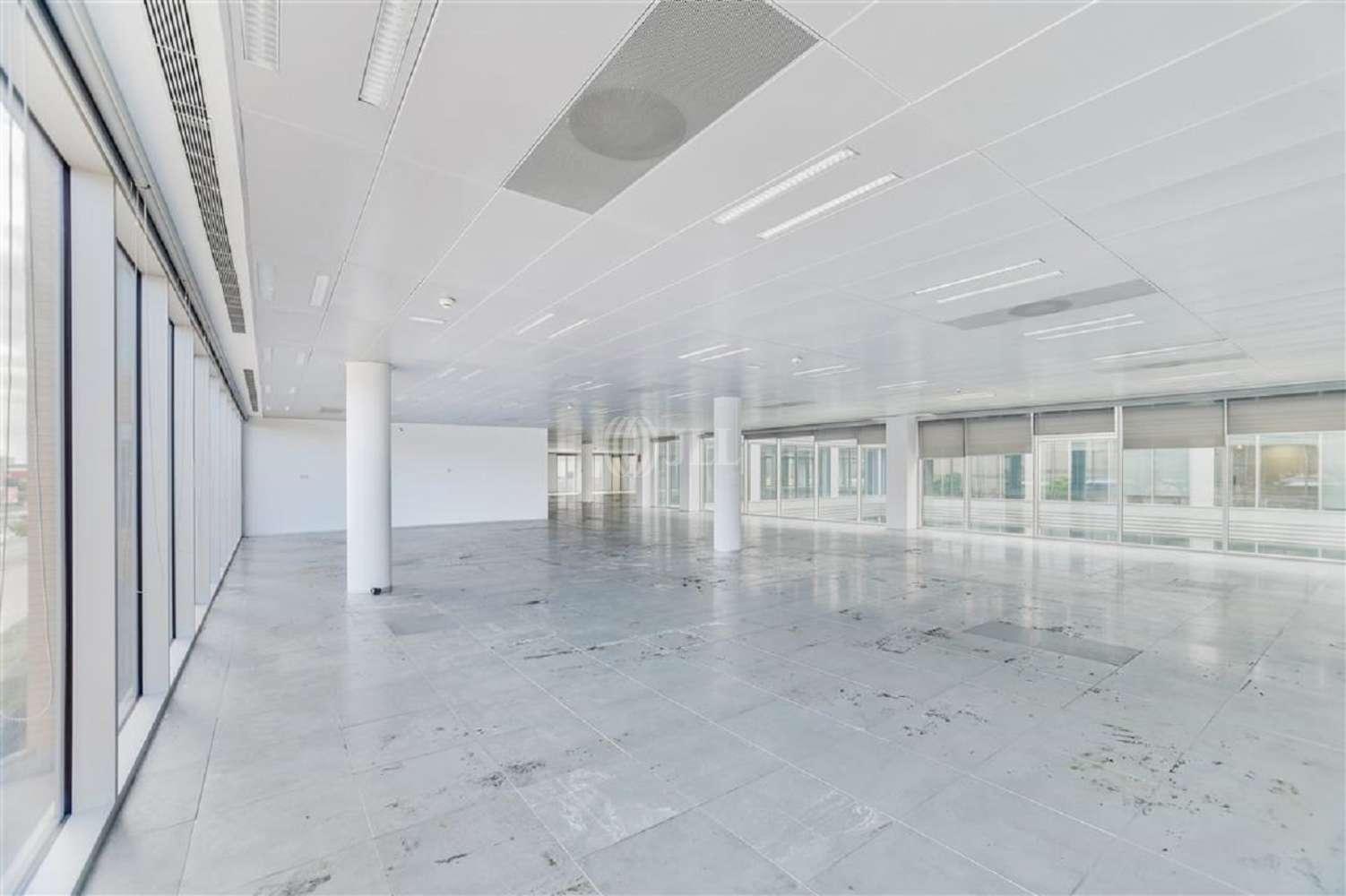Oficina Cornellà de llobregat, 08940 - WTC ALMEDA PARK - Edificio 8 - 20051