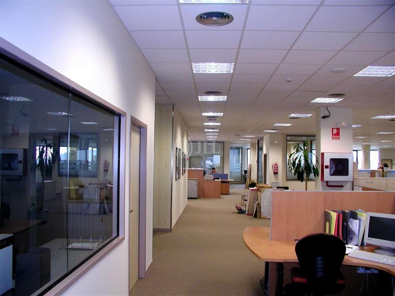 Oficina Barcelona, 08038 - LA MARINA - 20390
