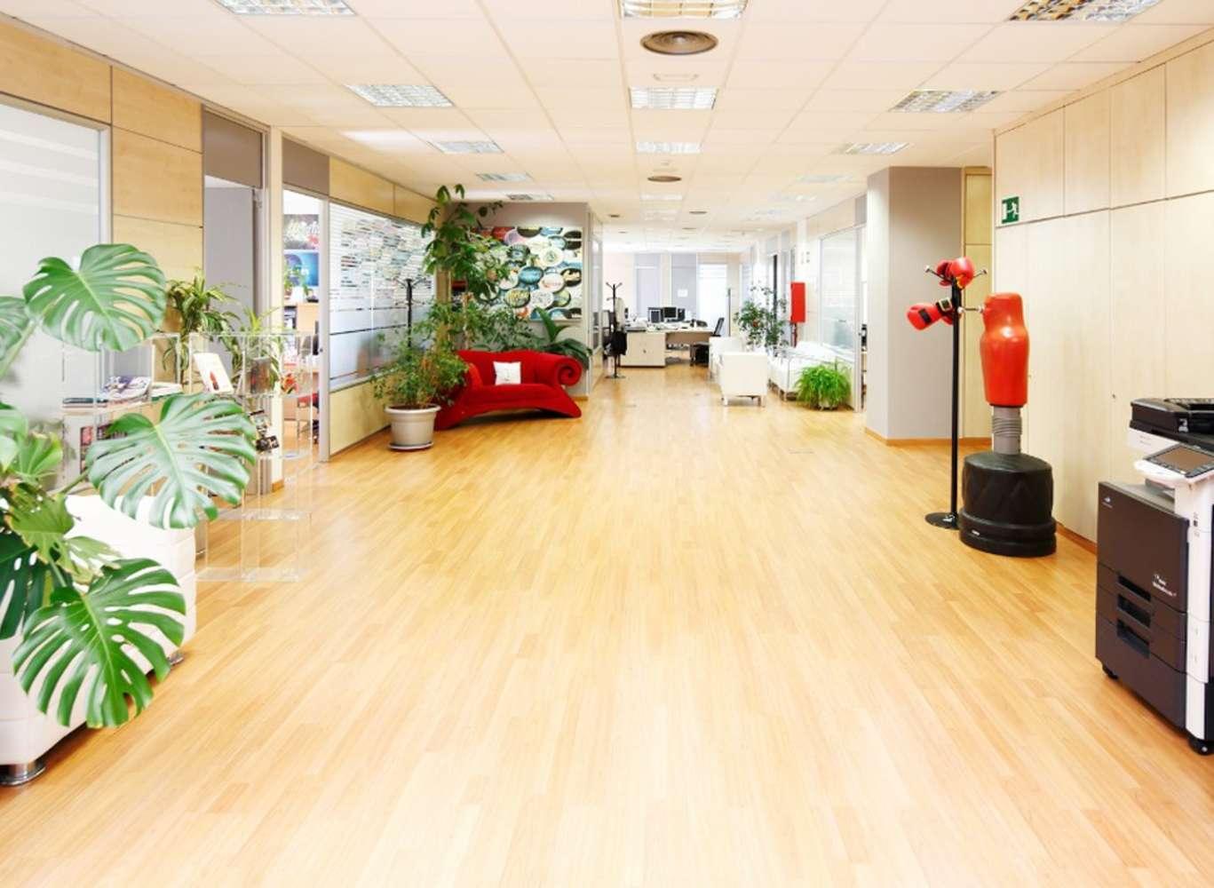 Oficina Madrid, 28050 - Edificio ELIPSE - 2008