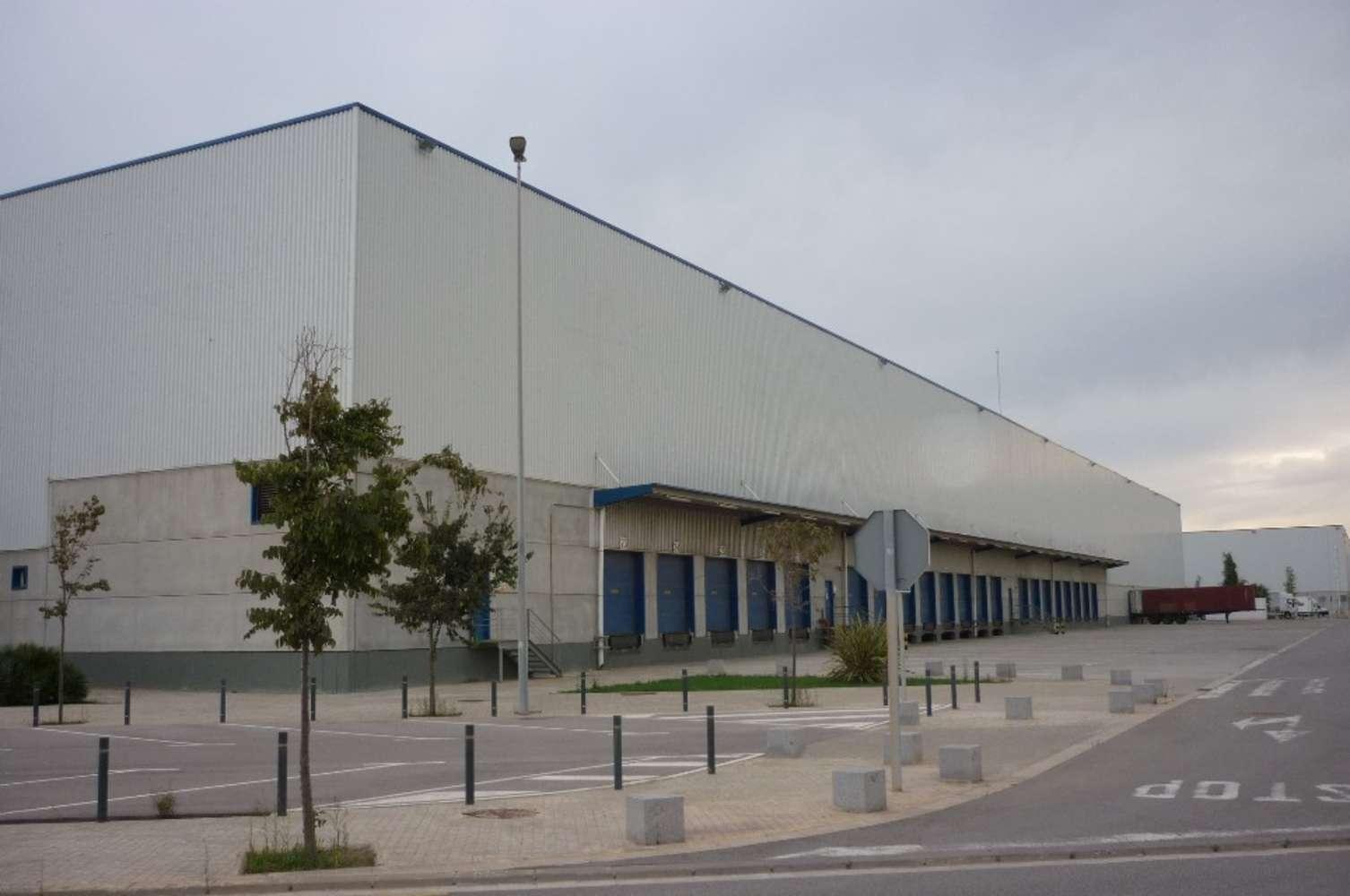 Naves industriales y logísticas Barcelona, 08040 - Nave Logística - B0047 - ZAL I PUERTO DE BARCELONA - 3330