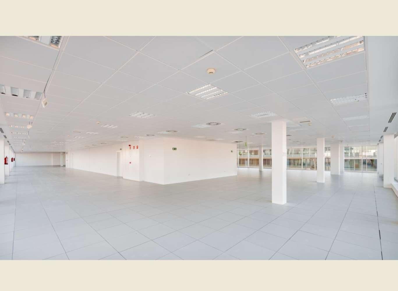 Oficina Madrid, 28027 - CELES - 8871