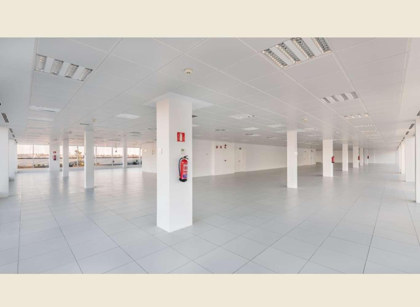 Oficina Madrid, 28027 - CELES - 8872