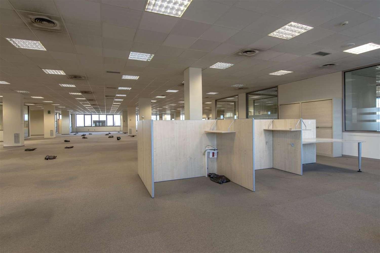 Oficina Barcelona, 08038 - LA MARINA - 9561