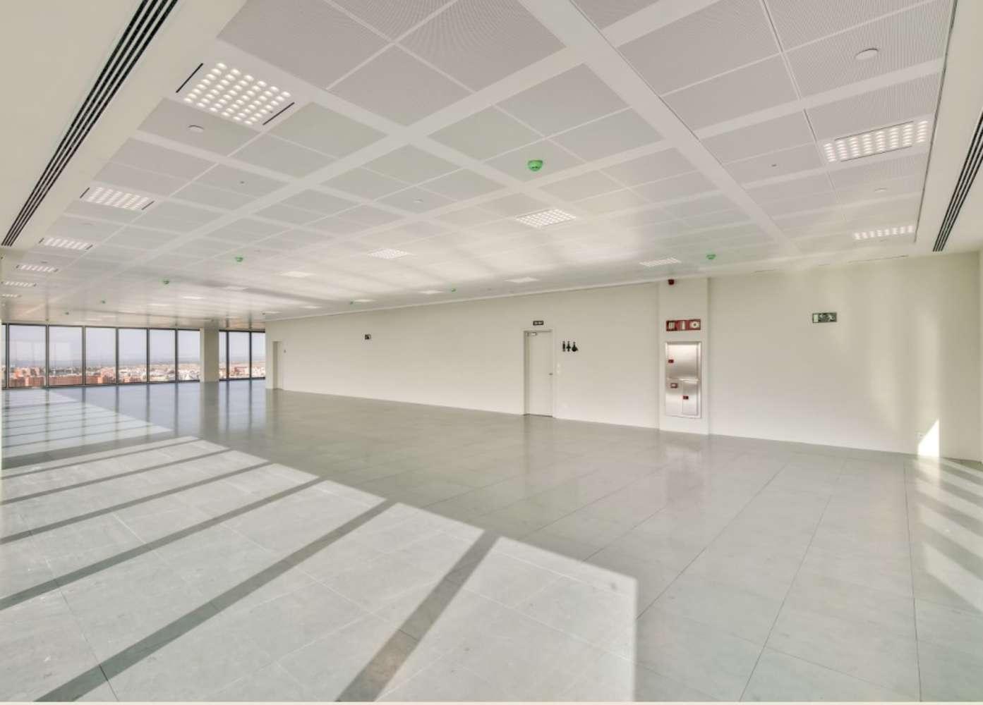 Oficina Madrid, 28050 - Torre Chamartín - 12239