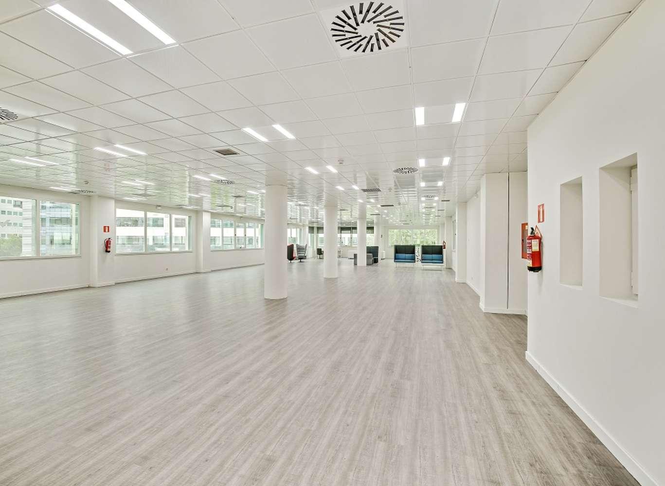 Oficina Madrid, 28050 - Delta Norte - 13708