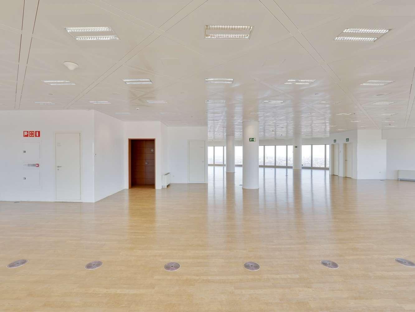 Oficina Madrid, 28046 - TORRESPACIO (D) - 17813