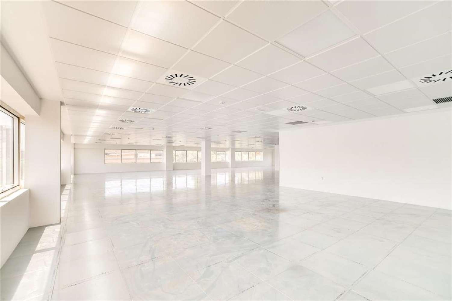 Oficina Cornellà de llobregat, 08940 - CITY PARC - EDIFICIO BERLIN - 17957