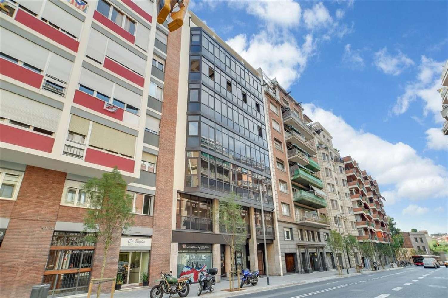 Oficina Barcelona, 08012 - RIERA DE CASSOLES 54 - 19167