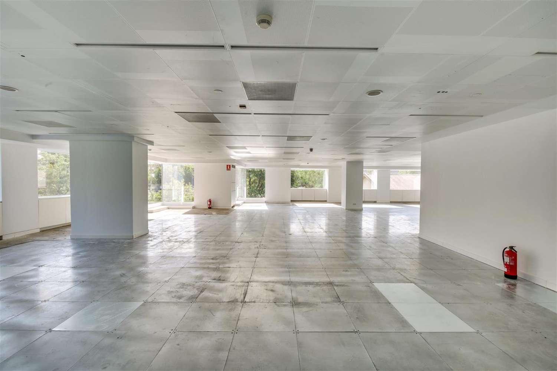 Oficina Madrid, 28046 - LA CASTELLANA 110 - 19859