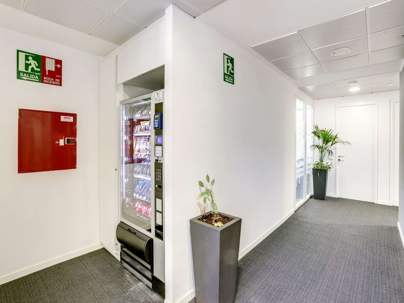Oficina Madrid, 28020 - Coworking - ORENSE 4 - 20169