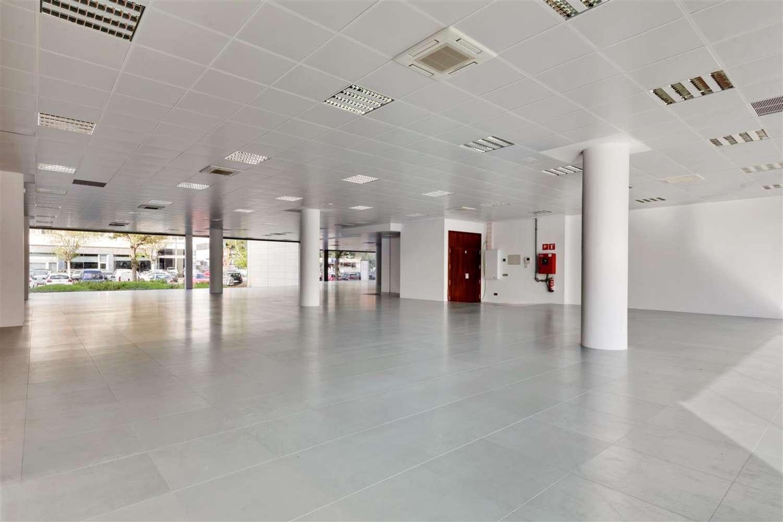 Oficina Cornellà de llobregat, 08940 - P.E. ARBORETUM - EDIFICIO OLIVO - 21579