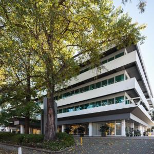 Ground,-8-Brisbane-Avenue-Office-for-Lease-1164-c66e76f7-cf18-e711-bb93-00505692015a_IMG_4304