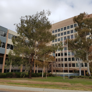 Electroboard-House-Office-for-Lease-1139-h