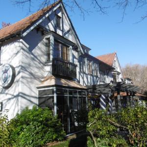 Tudor-House-Office-for-Lease-5895-9f912be2-d0f5-4490-aeb6-06b560d7d76b_P1000973