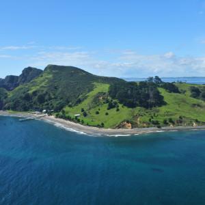 1-Motukawaiti-Island-Avenue-Office-for-Sale-6246-f1c8c154-66a8-4707-91fa-0e09f34a899f_01-min
