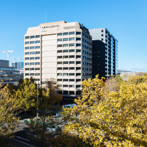 Canberra-House-Office-for-Lease-10106-h